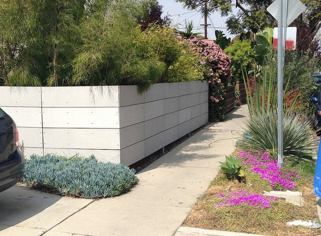 Cement Board Fence In La Garden Fence Panels Fence Landscaping Backyard Fences