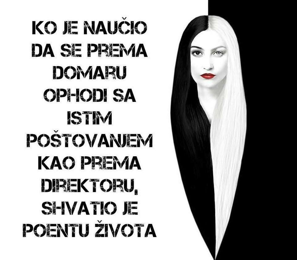 Tweets Liked By Ana Djordjevic Anapetra15 Twitter Life Quotes Quotes Words Of Wisdom
