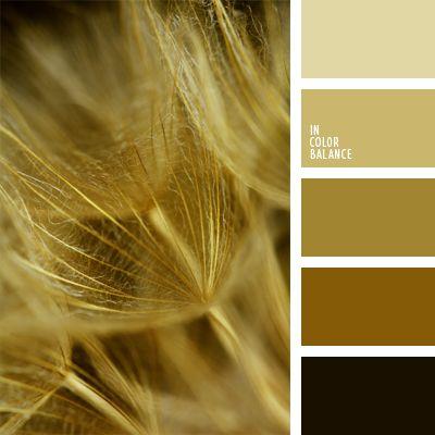 Color dorado combinaci n de colores monocrom tica elecci n del color marr n claro marr n - Color tierra claro ...