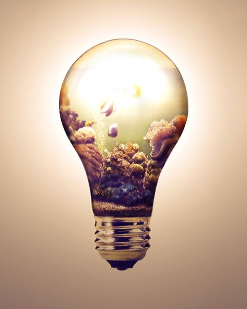 Light Bulb Drawing Tumblr Design Inspiration 1014722 Light