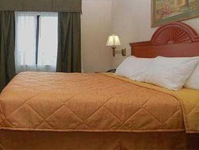 Comfort Suites Fort Pierce (FL), United States
