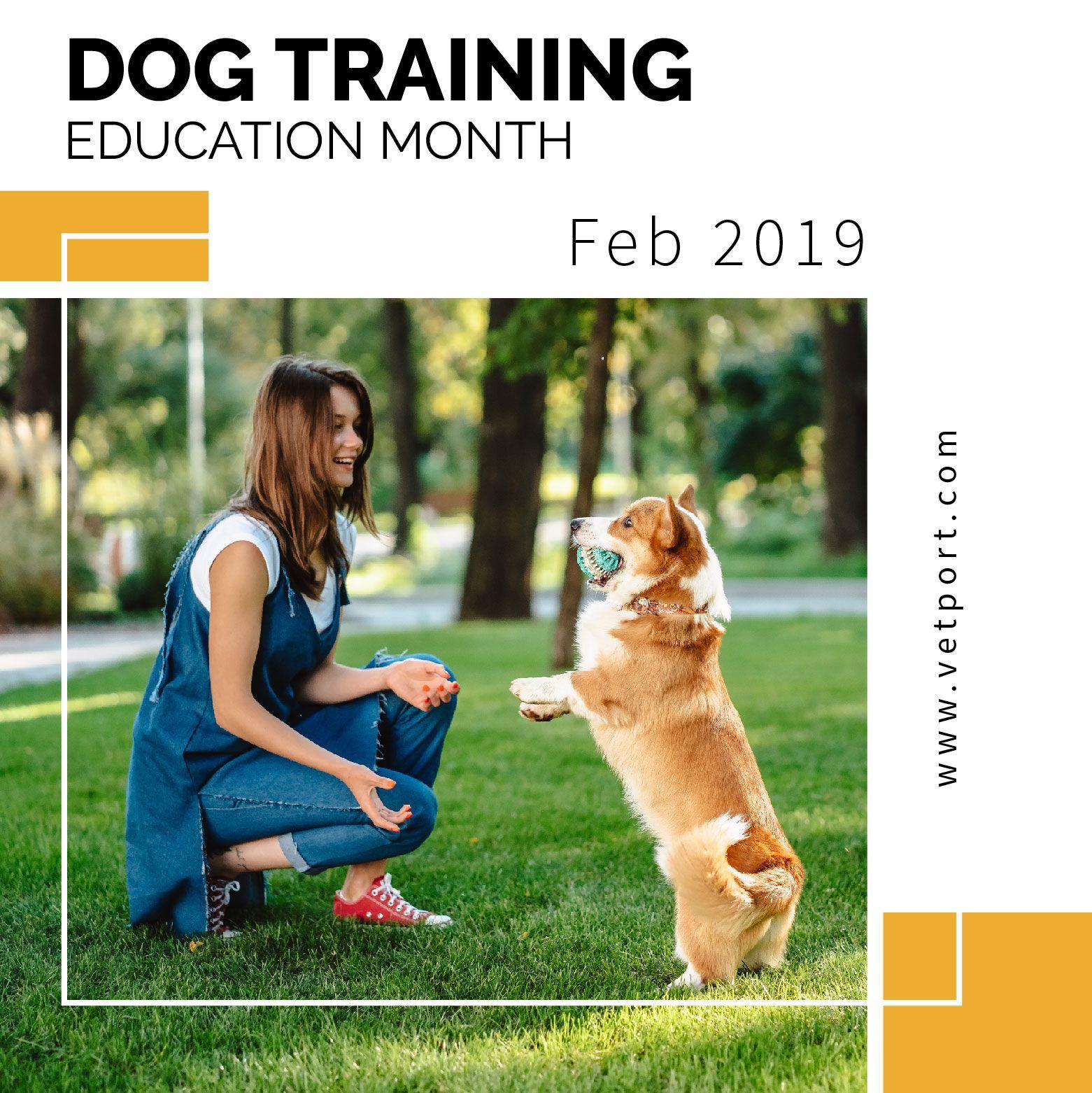 Dog Training Education Month February 2019 Tuesdaymotivation