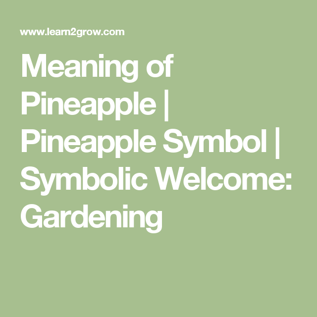 Meaning Of Pineapple Pineapple Symbol Symbolic Welcome