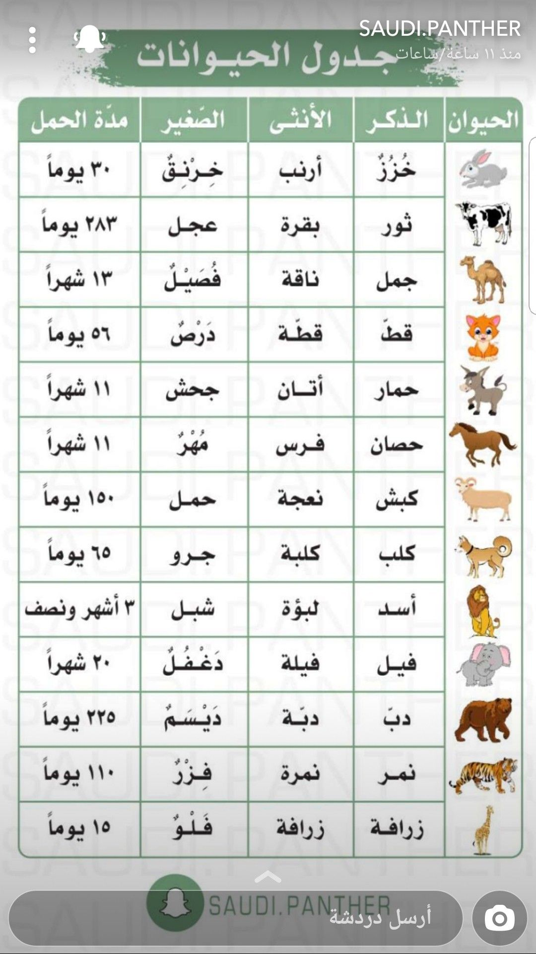 Pin By Ghadur Noor On تعليمي Word Search Puzzle Words Word Search