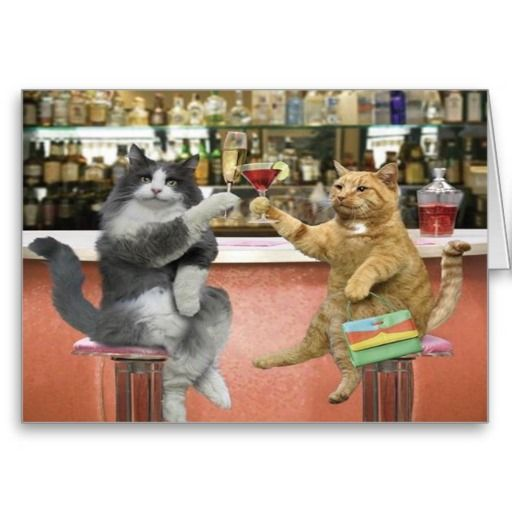 Here's To You Baby Greeting Cards lowest price for you. In
