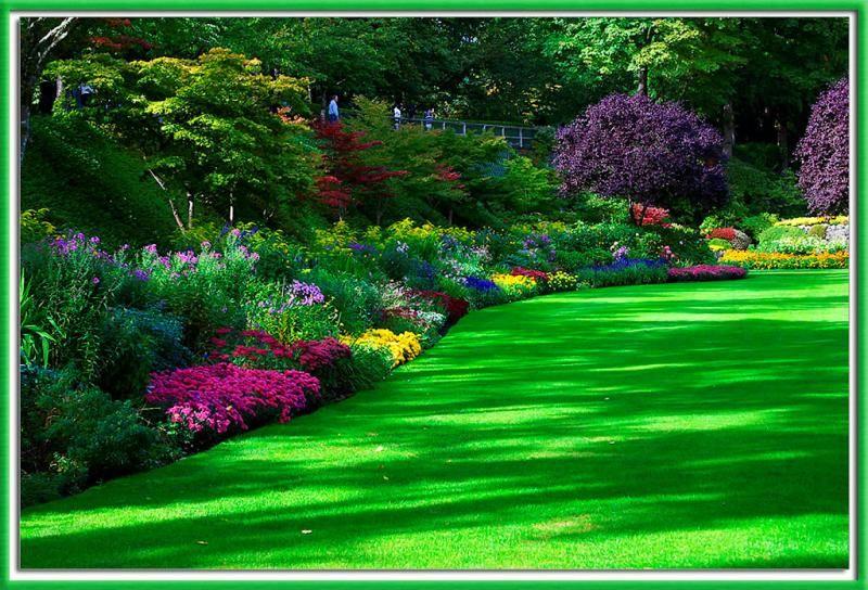 Como decorar un jardín con flores Si has observado en alguna parte