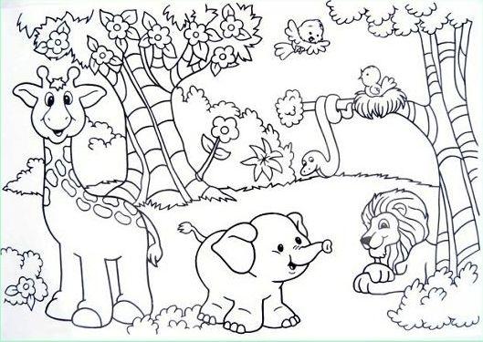 animais na floresta para colorir pesquisa google animales