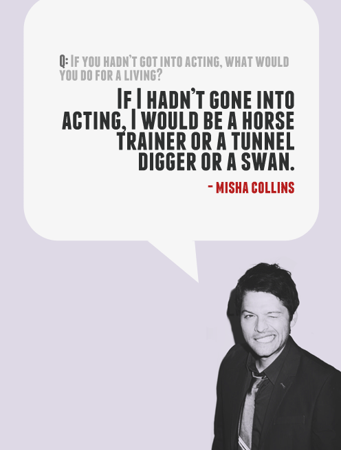 based on what i ve seen of misha s resume i wouldn t be surprised