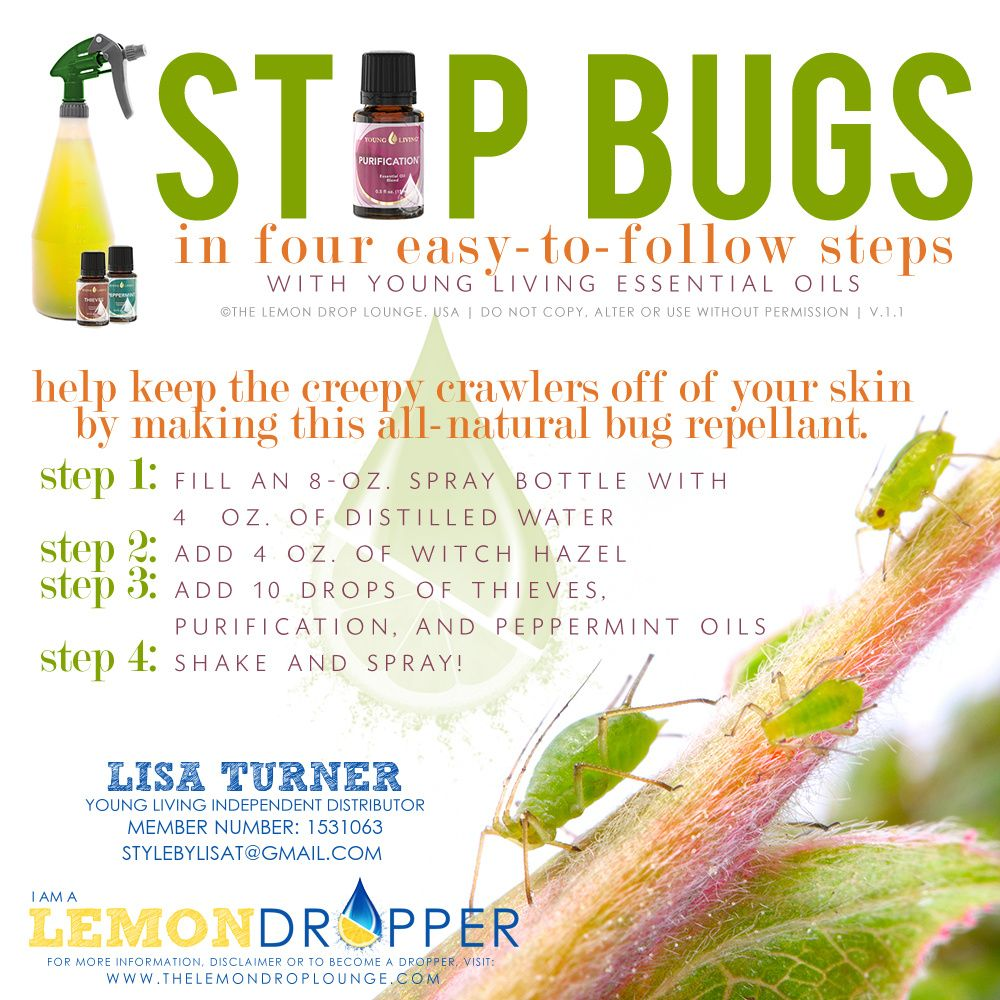 STOP BUGS ALL NATURAL