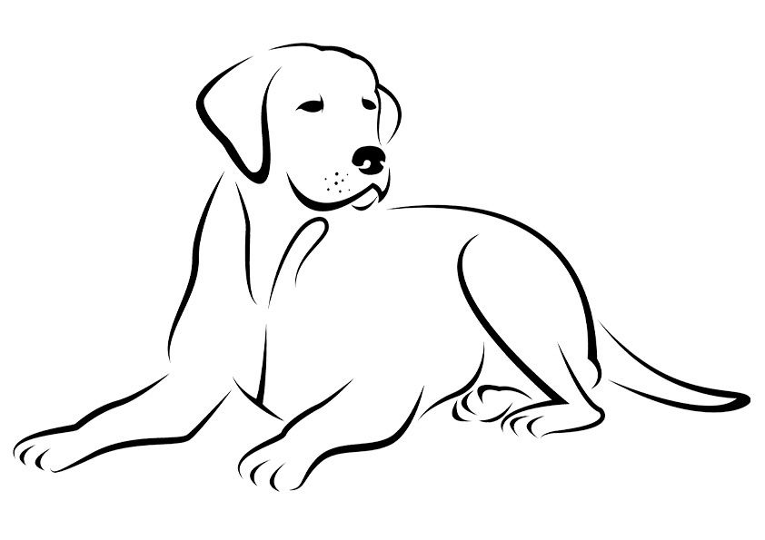 Free Printable Dogs And Puppies Coloring Pages For Kids Puppy