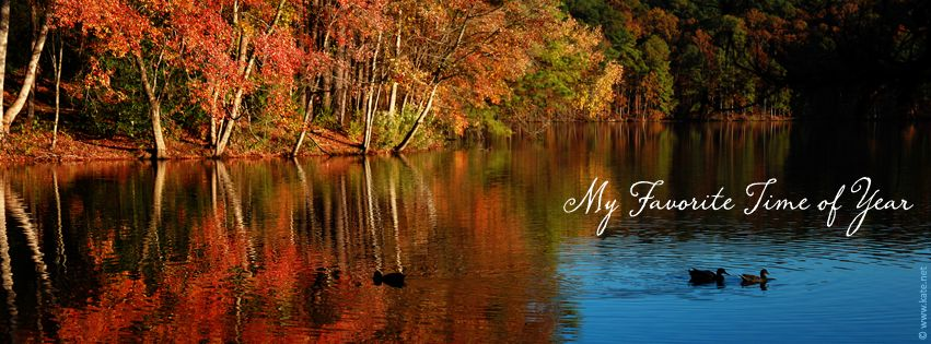 fall facebook cover images - Google Search | FB Covers | Pinterest ...