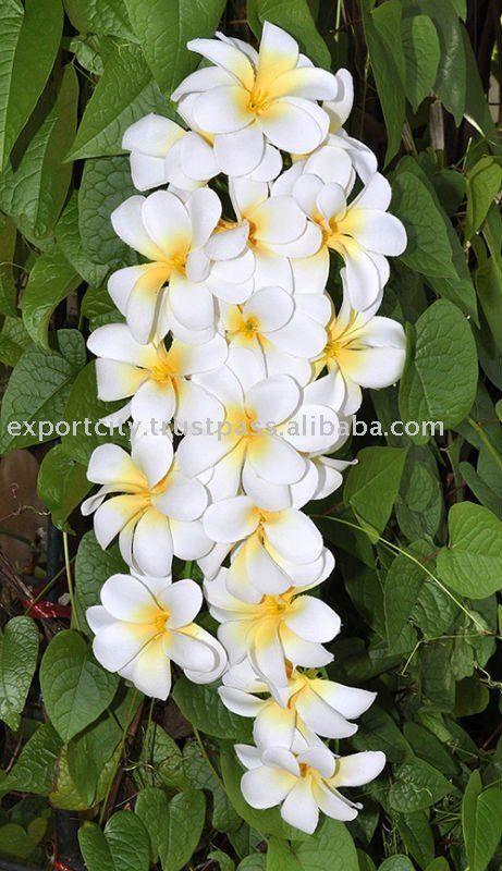 Hawaiian Flowers | 18 flowers bouquet Hawaiian flower lei, leis ...