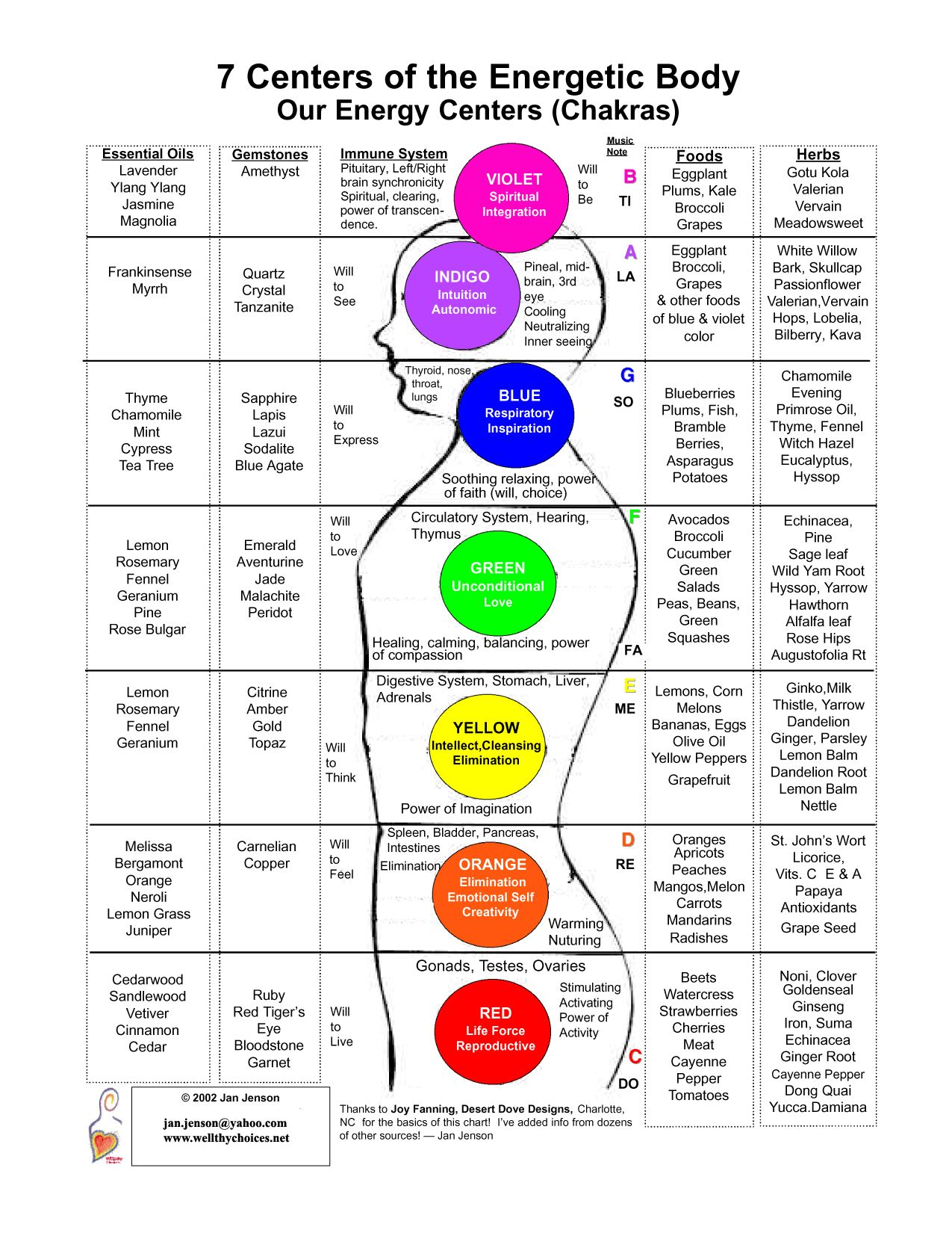 body chakra chart: Seven centres of the energetic body reiki and chakra pinterest