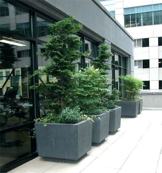 Diy Large Rectangular Concrete Planters Home Deseign 400 x 300