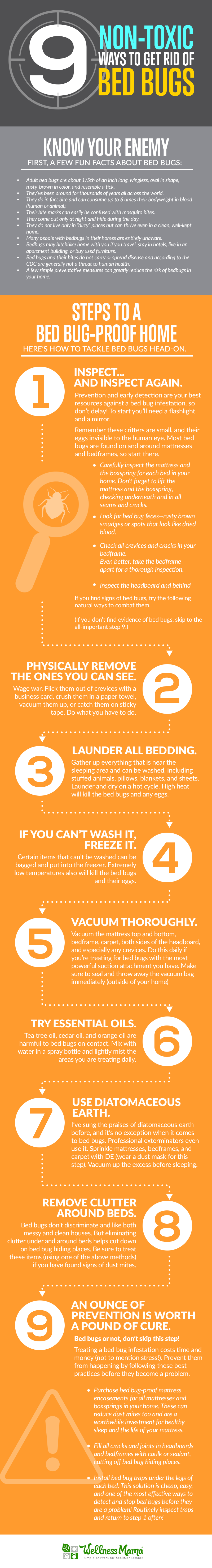 How to get rid of bed bugs 9 non toxic options bed bugs bites how to not let the bed bugs bite and keep them out of your house killing ccuart Choice Image