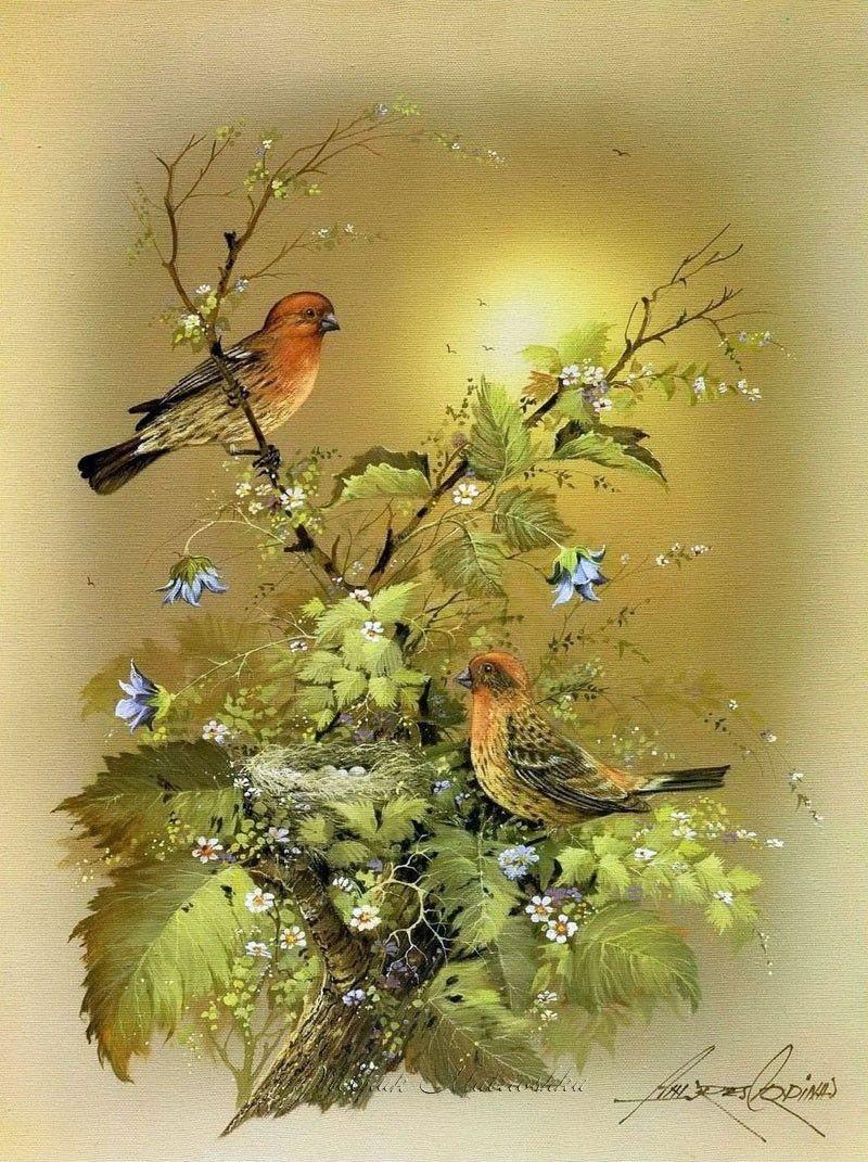 картинки птичек для декупажа начинкой