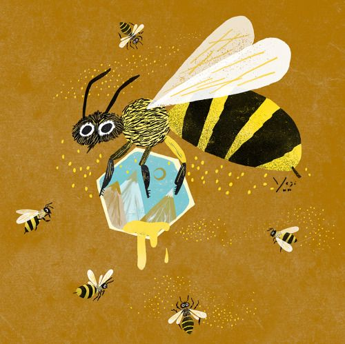 See Outer Space Bee Art Animal Illustration Drawings