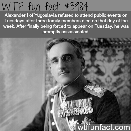 #WTF-fun-facts