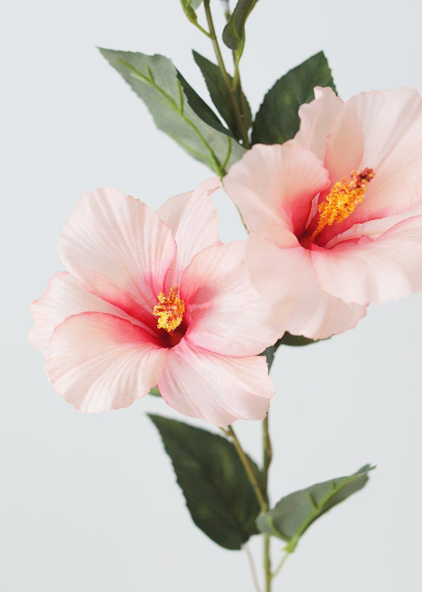Looking for pink wedding flowers or tropical artificial flowers? Check out this adorable hibiscus flower spray in light pink with hot pink centers. Add these pretty pink hibiscus flowers to your DIY beach wedding bouquets for an exotic focal point!  Light Pink 31