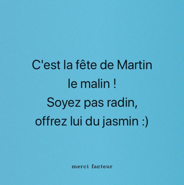 Tu Aimes Le Jasmin D Hiver Aujourd Hui On Fête Les