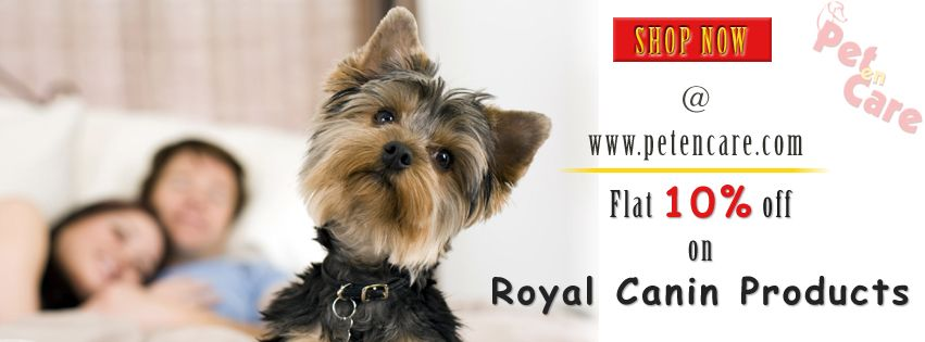 Flat 10 off on RoyalCanin product. Visit Our Website For