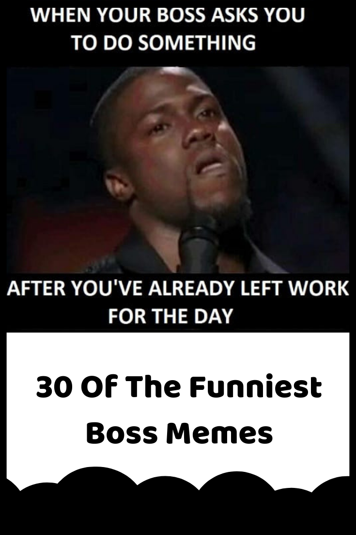 low priced buy popular great deals 30 Of The Funniest Boss Memes | Boss humor, Funny, Funny memes