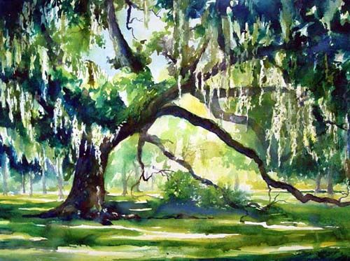 Live Oak Tree Watercolor Painting Watercolor Trees Painting