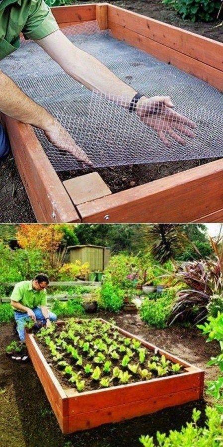 32 amazing raised garden beds ideas 4 Outdoor gardens
