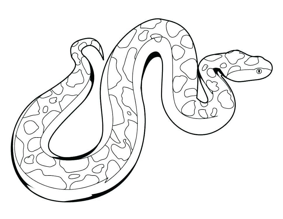 Snake Coloring Sheet 9VIQ Sea Snake Coloring Page Children ...