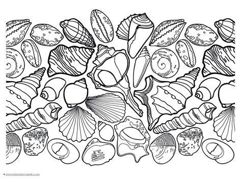 Seashell Coloring Pages   Cuadrados