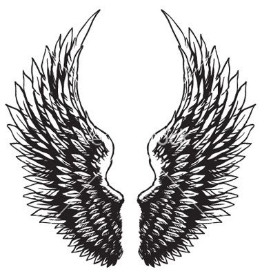 Hand Drawn Eagle Wings Vector Image On Vectorstock Wings Drawing Eagle Wings Wing Neck Tattoo