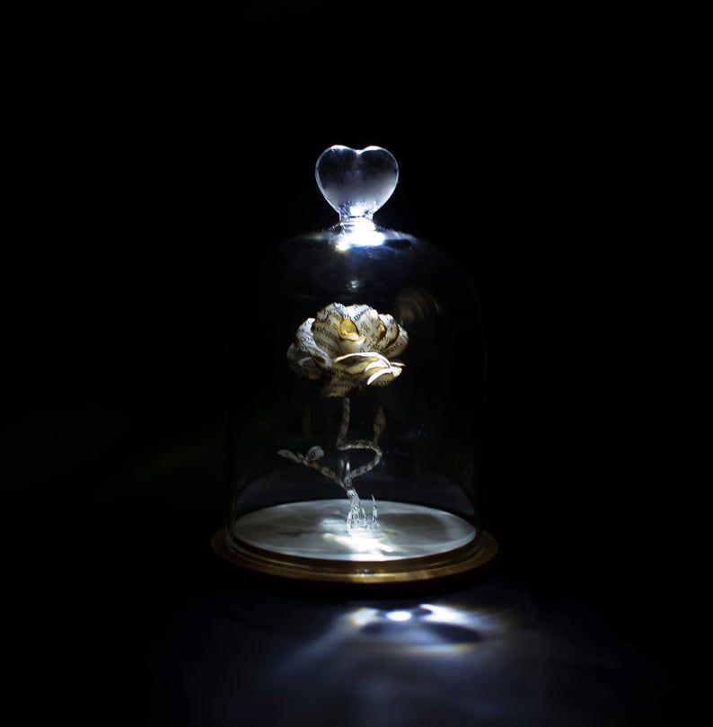 Betoverde Rose Belle en het beest Forever Rose miniatuur | Etsy
