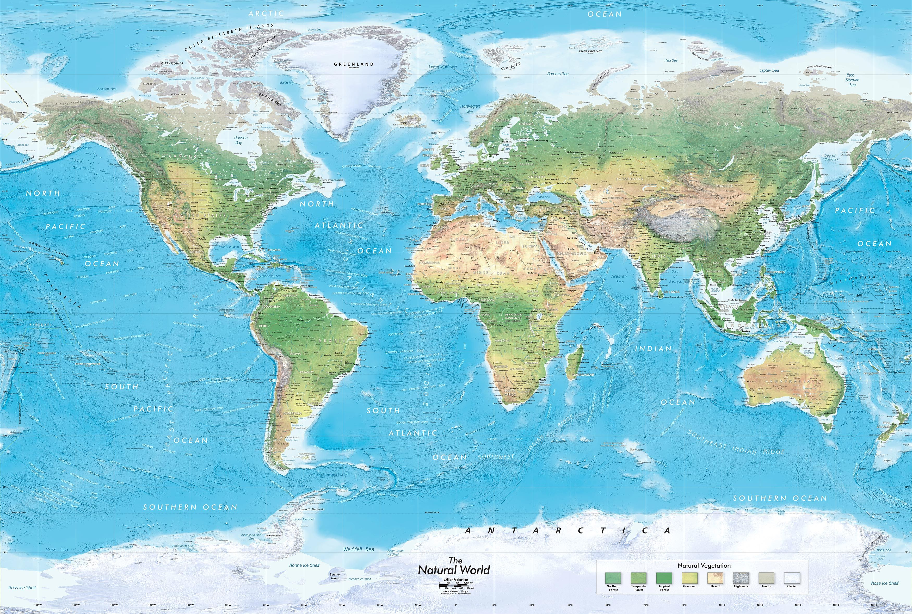 The Natural World Physical Map Mural World Map Wallpaper Map Murals World Map Mural
