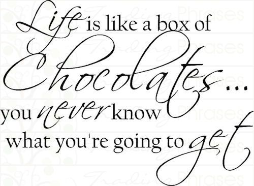 Life is Like a Box of Chocolates Wall Decal Quotes