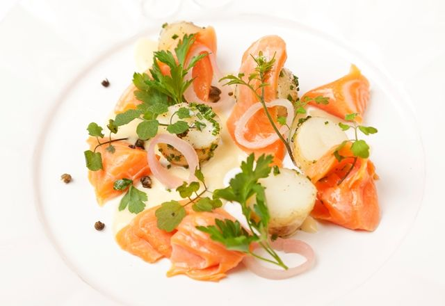 Salmon fish cake starter recipes