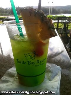 Things to Do Around Oahu on a Budget   Oahu tips and tricks, Turtle Bay, Kate's Survival Guide