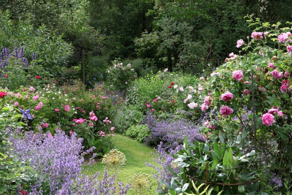 5 gestaltungstipps f r den perfekten rosengarten - Gartengestaltung rosengarten ...