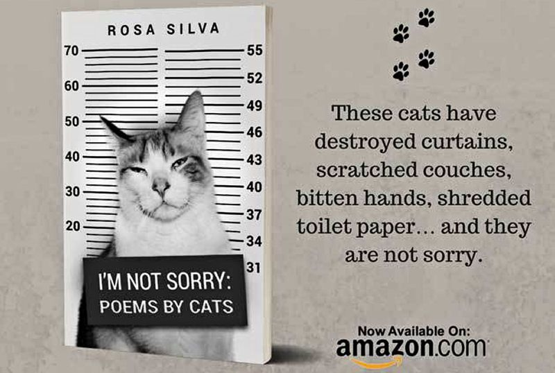 A book of poems written by cats called 'I'm Not Sorry