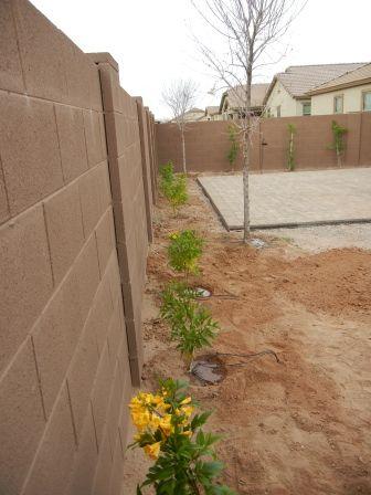 Desert landscape and hardscape in AZ succulents cacti