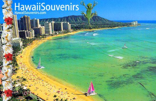 Google Image Result for http://www.hawaiisouvenirs.com/image/hawaiian-souvenirs.jpg