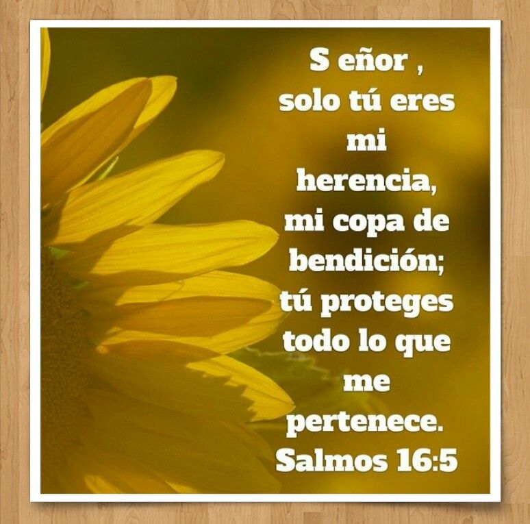 Salmo 16 5 Diosteamaaypeleaporsushijos Bible Apps Proverbs 16 Proverbs 16 24
