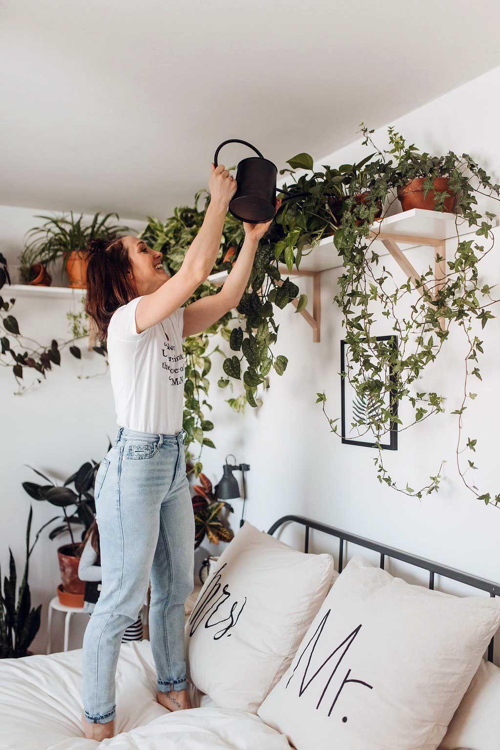 44 Incredible Apartment Bedroom Plants Ideas Living Room Red Bedroom Decor Bedroom Plants