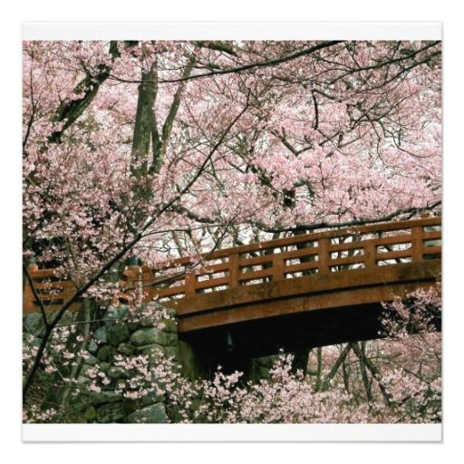 Cherry Blossom Bridge Invitation Zazzle Com Cherry Blossom