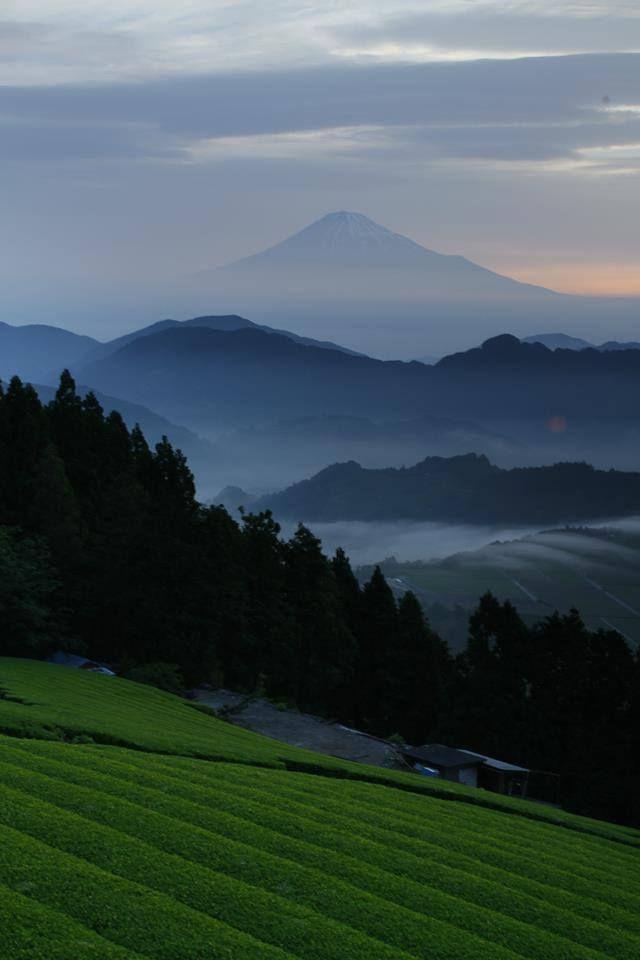 via Facebook 富士山(Mount Fuji)/ Yukihiro Suzuki
