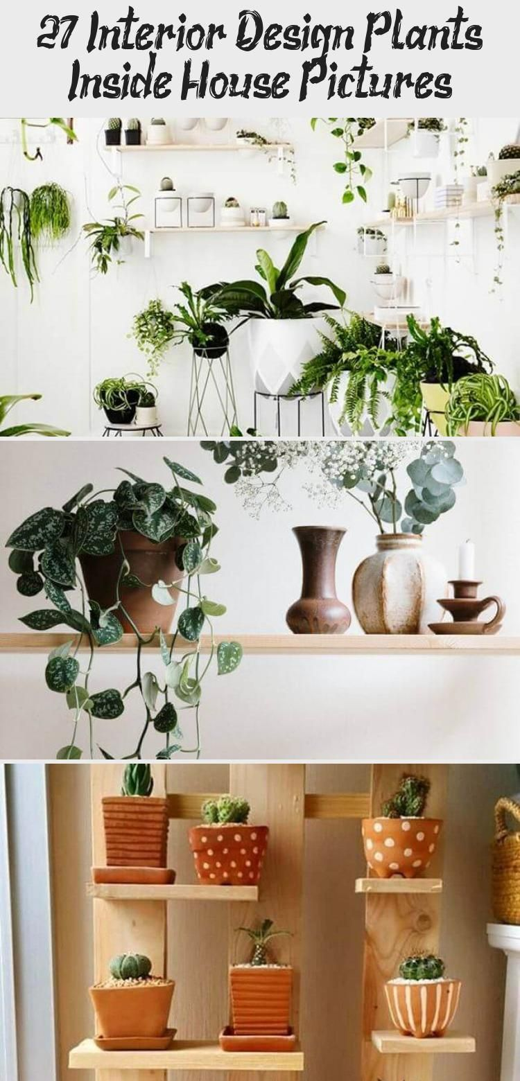 27 Interior Design Plants Inside House Pictures