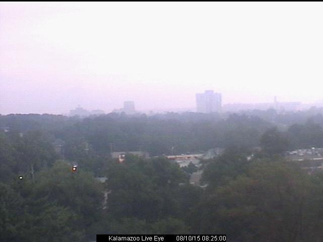 WWMT Newschannel 3 :: Weather - Live Eye Cameras - Kalamazoo