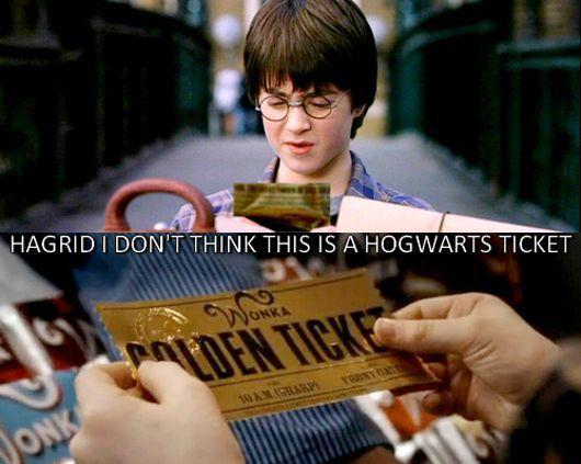 Harry Potter Harry Potter Funny Harry Potter Harry Potter Fan