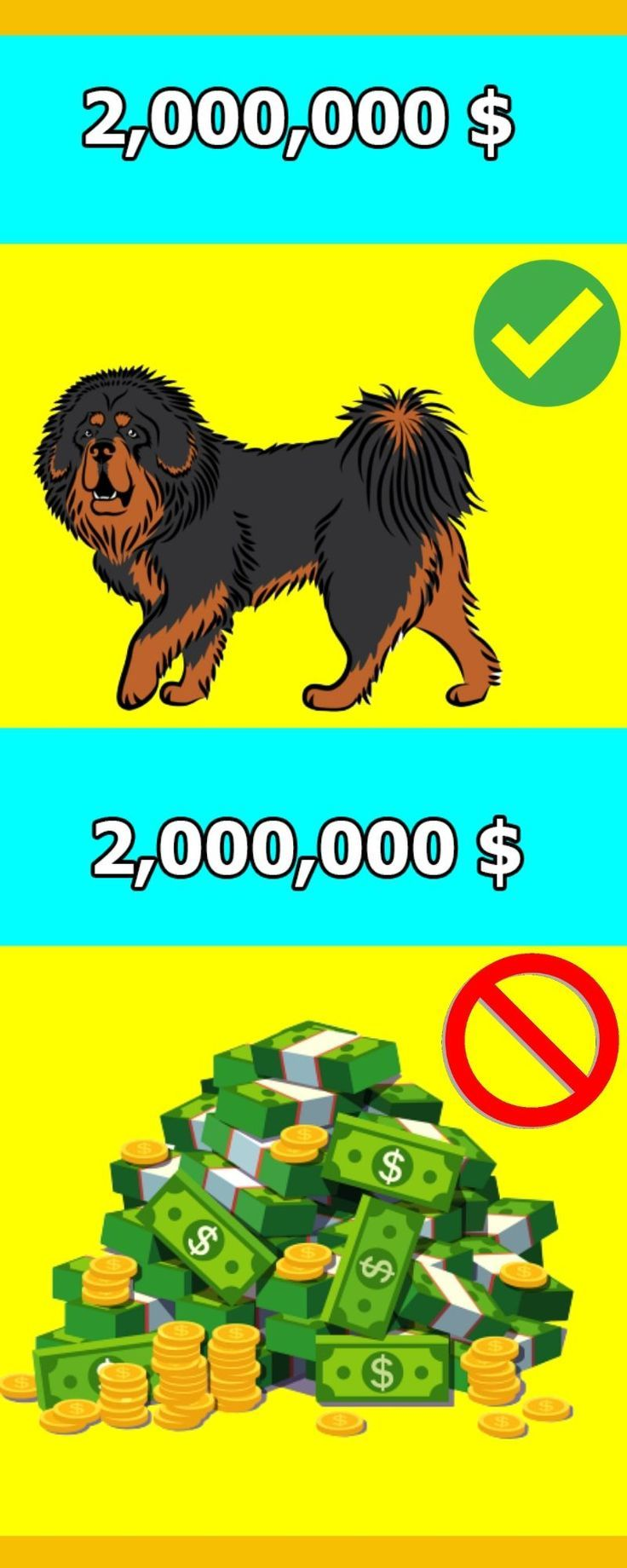 Ranked 25 Of The Most Expensive Pets That Only The Rich Can Own