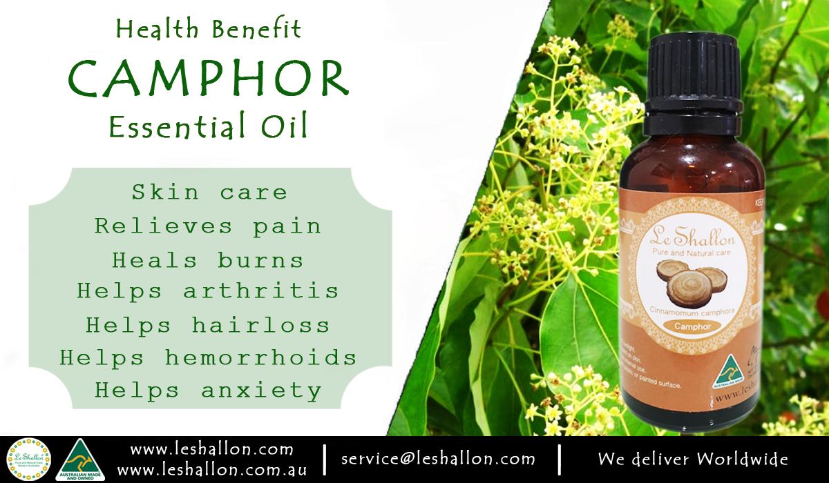 Camphor Essential Oil Le Shallon Pure And Natural Care Hemorrhoids Camphor Essential Oil Essential Oil Skin Care
