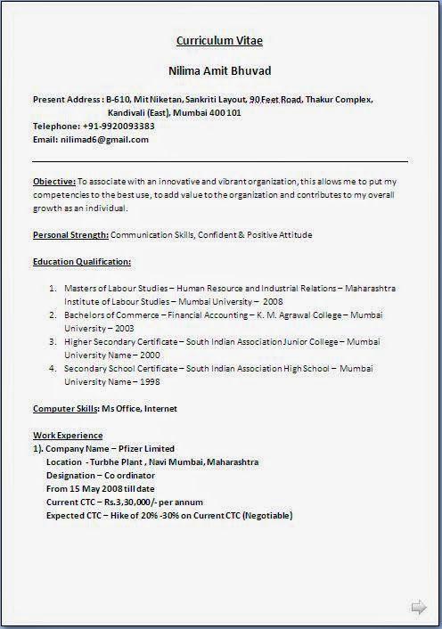 best resume writers sample template example ofbeautiful